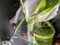 xe đẩy trẻ em hope-308 tại NHa Trang
